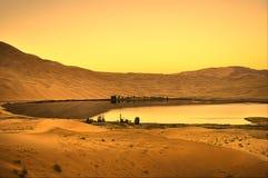 Oasi in deserto e nel tramonto Immagine Stock