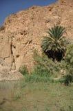 Oasi di Chebika in Tunisia del sud. Fotografia Stock