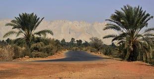 Oasi di Kharga, la strada con gli alberi della data e montagne immagini stock
