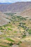Oasi Himalayan Fotografie Stock