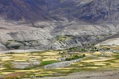 Oasi Himalayan Immagine Stock Libera da Diritti
