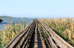 Oasi La Valle, Lake Trasimeno, Italy Royalty Free Stock Photos