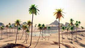 Oasi nel deserto Immagine Stock