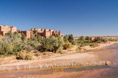 Oasi nel deserto del Sahara sotto un cielo blu Fotografia Stock
