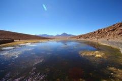 Oasi nel deserto di Atacama immagine stock