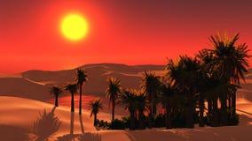 Oasi nel deserto sabbioso Immagine Stock