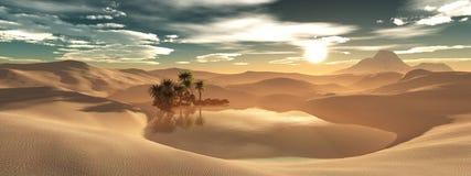 Oasi nel deserto sabbioso Fotografie Stock Libere da Diritti