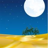 Oasi nell'ambito della luce della luna Immagine Stock