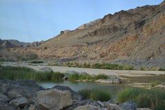 Oasi nell'Oman Fotografia Stock Libera da Diritti