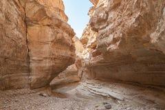Oasi Tamerza della montagna in Tunisia 4 Immagine Stock