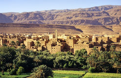 Oasis. Tinhrir, oasis and city in sahara desert edge, southern Morocco Stock Photo