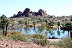 USA, Arizona: Artificial Oasis royalty free stock image