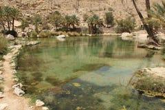 oasis Lizenzfreies Stockfoto