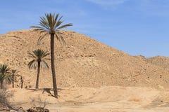 Oasis africano Imagenes de archivo