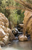 An oasis in the Atlas Mountains Royalty Free Stock Image