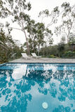 Oasis of an Australian backyard swimming pool surrounded by nati Stock Photos