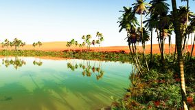 Oasis. Beautiful natural background - African oasis Stock Image