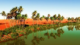 Oasis. Beautiful natural background - African oasis royalty free stock images
