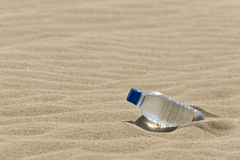 Oasis in a Bottle Stock Image