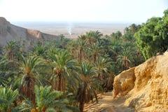 Oasis Chebika de la Tunisie Photographie stock libre de droits