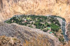 Oasis in the Colca canyon Peru stock images