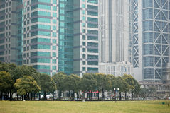 Oasis in concrete forest. Trees and grass field among modern buildings in Pu Dong, Shanghai Royalty Free Stock Photos