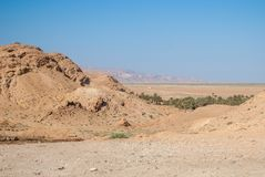 Oasis, désert sec et montagnes sur l'horizon Photographie stock