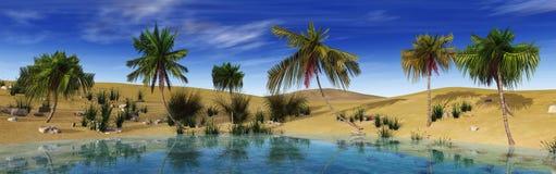 Oasis dans le désert Photographie stock