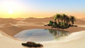 Oasis dans le désert arénacé Photographie stock libre de droits