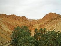 Oasis dans le désert de Sahara Image libre de droits