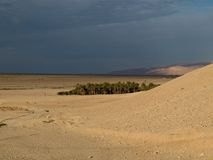 Oasis dans le désert de Sahara Photographie stock libre de droits