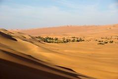 Oasis dans le désert libyen Photographie stock