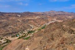 Oasis dans un désert en pierre photos libres de droits