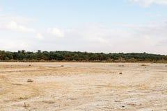 Oasis de Bahariya Égypte photo stock
