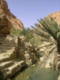 Oasis de Chebika Image stock