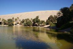 Oasis de Huacachina, Pérou images stock