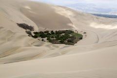 Oasis de Huacancina au Pérou Photo stock