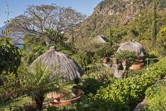 Oasis de jardin dans les tropiques images libres de droits