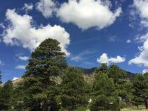 Oasis de la montaña Imagen de archivo libre de regalías