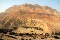 oasis de montagne dessous Photographie stock libre de droits