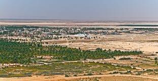 Oasis del desierto Imagen de archivo libre de regalías