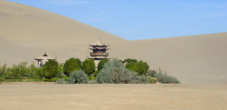 Oasis in the desert. A little Oasis at the Crescent Lake, close to Dunhuang, Prov. Gansu, China stock photography