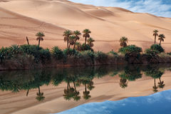 Oasis desert Royalty Free Stock Photography