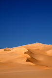 Oasis desert Royalty Free Stock Images