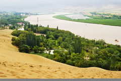 An oasis in the desert. The vast desert, have a piece of green wood,The Yellow River is through in this middle。This is within the territory of China stock photos