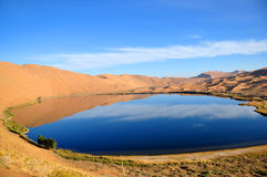 Oasis in desert. A beautiful oasis in desert Stock Photography