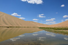 Oasis in desert Royalty Free Stock Photo