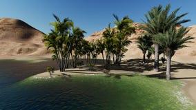 Oasis in the desert Stock Image