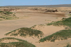 Oasis in the Desert Gobi Royalty Free Stock Photos