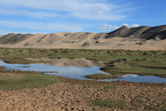Oasis in the Desert Gobi Royalty Free Stock Photography